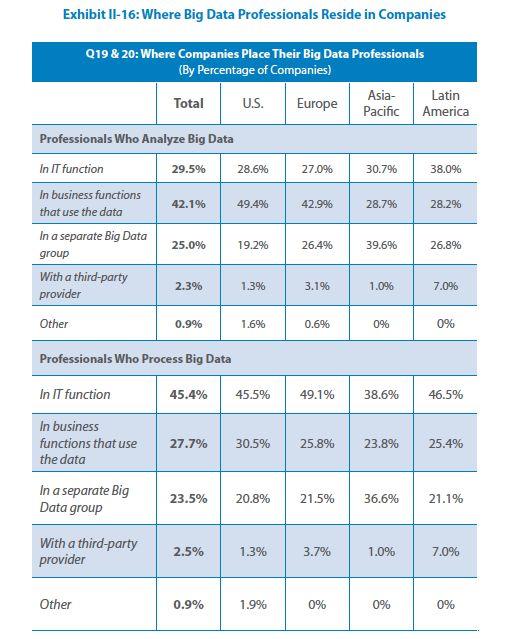Big Data teams in companies - TCS Big Data 2013